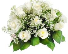13 White Roses Bouquet